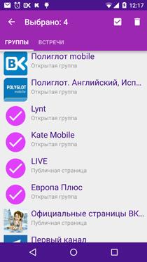 Полиглот ВКонтакте. Выделение групп для удаления